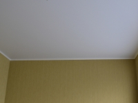 Матовый потолок100